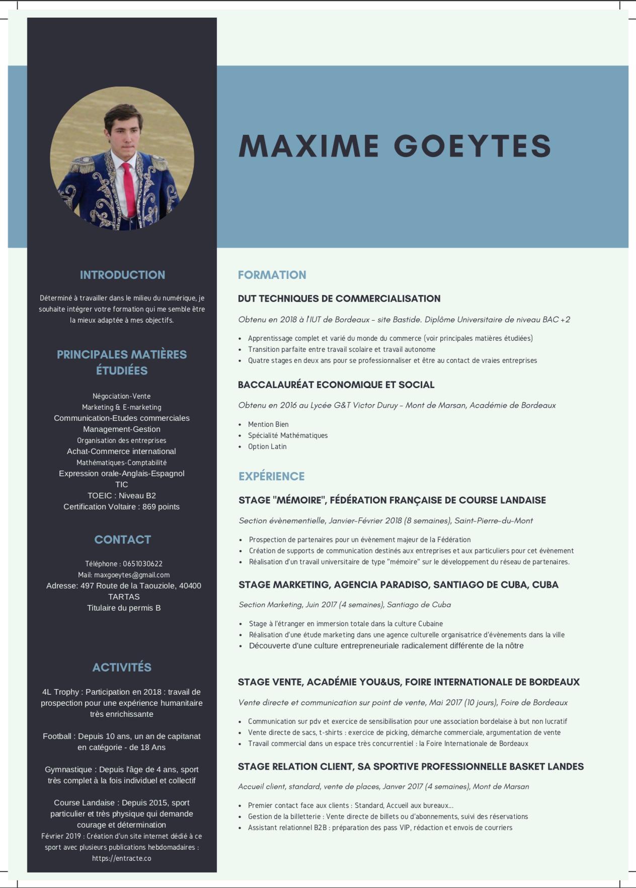 CV, Goeytes Maxime